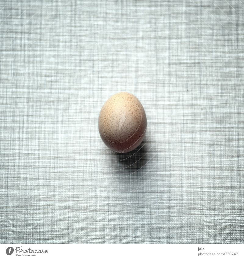 egg Food Nutrition Organic produce Simple Fresh Round Brown Gray Black White Egg Cholesterol Colour photo Interior shot Deserted Copy Space left