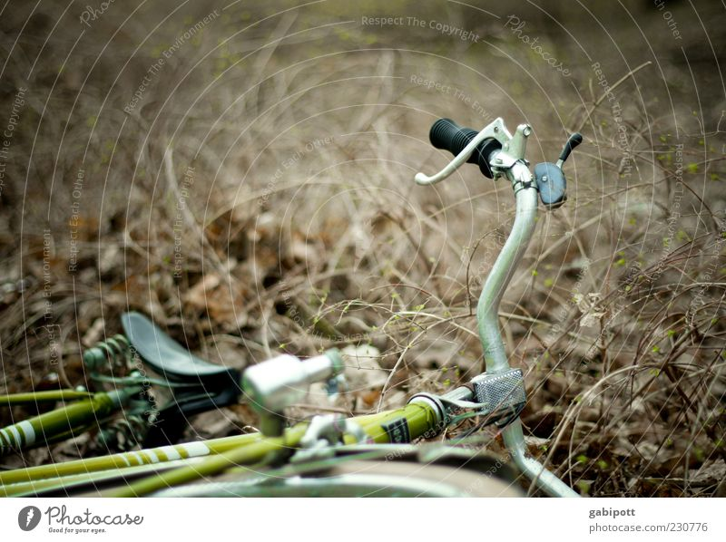Green Brown Lie Broken Gloomy Bushes To fall Sudden fall Trashy Accident Disaster Frustration Scrap metal Bicycle saddle Bicycle handlebars Trash