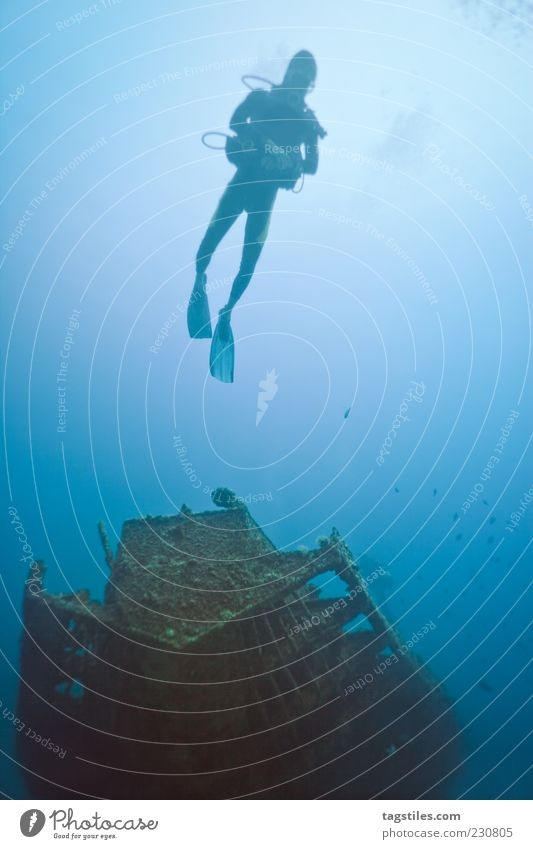 wreck diving Wreck Dive Sports Diver Ocean Mauritius Watercraft Decline Sun Blue Colour photo Copy Space right Calm Idyll Loneliness Leisure and hobbies Freedom