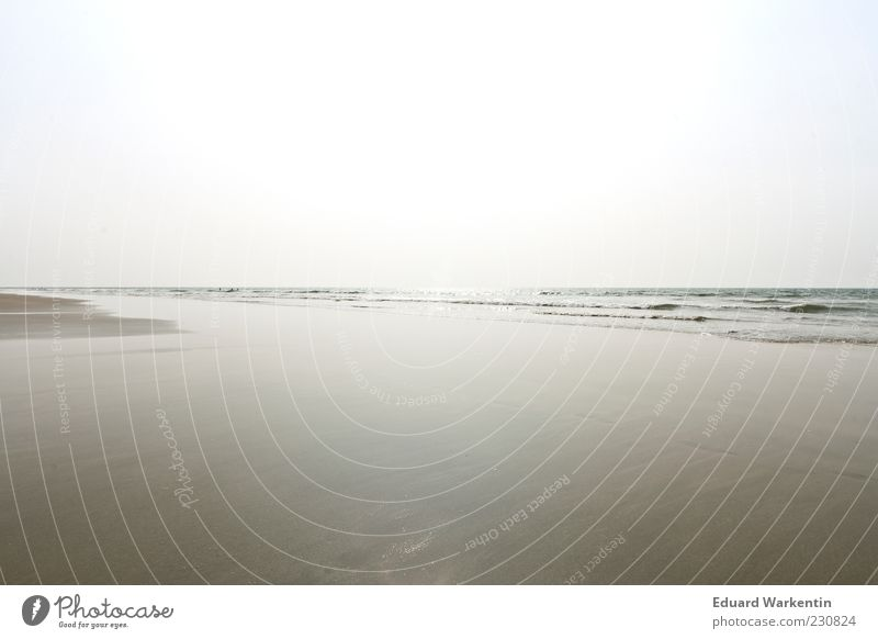 Sky Water Sand Summer Beach Ocean Environment Nature Landscape Air Beautiful weather Waves Coast Blue Gray Minimalistic Empty Depth of field Colour photo