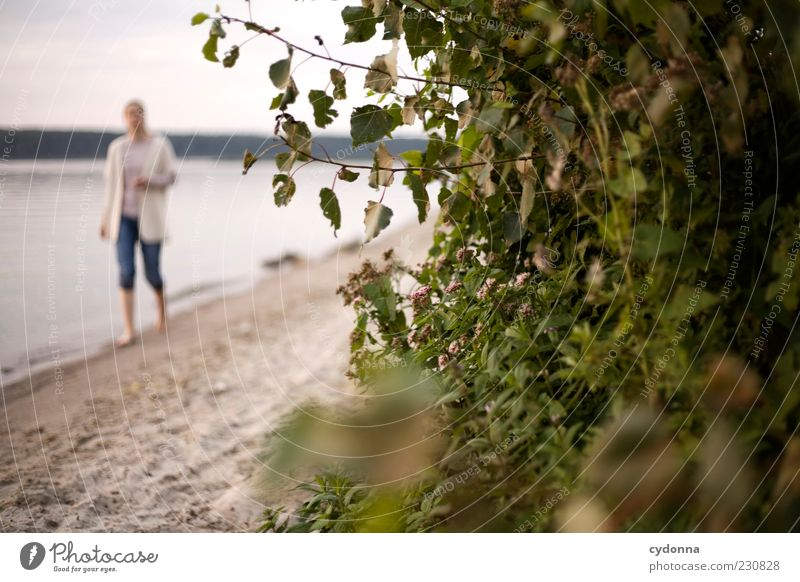 beach walk Lifestyle Well-being Contentment Relaxation Calm Leisure and hobbies Vacation & Travel Trip Summer vacation Human being Woman Adults Environment