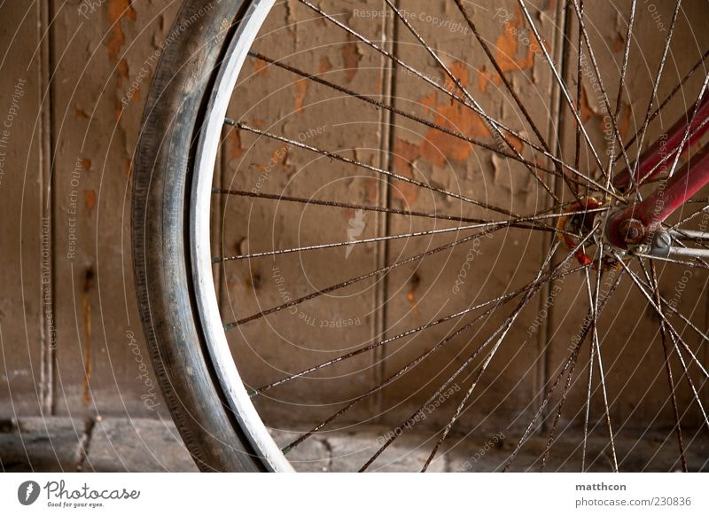 Diamond from front part II Bicycle Old Brown Red Transience Colour photo Tire Spokes Rust Detail Section of image Bicycle tyre bicycle spokes