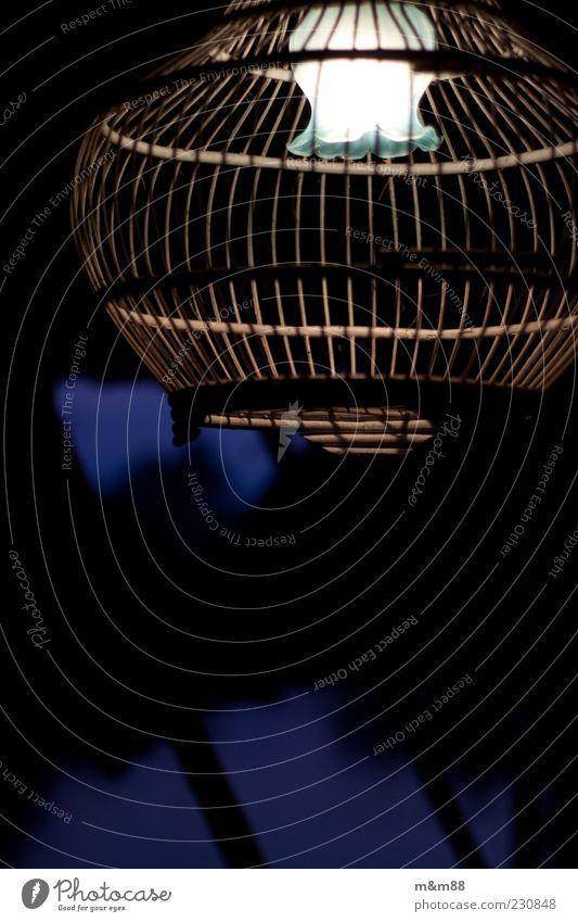 White Blue Wood Lamp Bright Glass Esthetic Decoration Uniqueness Exceptional Illuminate Lampshade Bird's cage