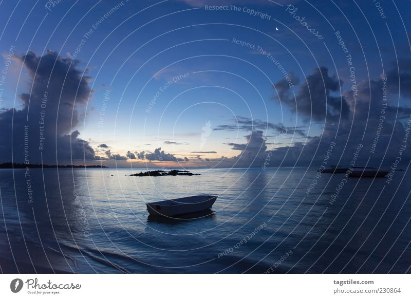 PONDERING SILENCE Watercraft Night Evening Blue Mauritius Vacation & Travel Leisure and hobbies Freedom Idyll Colour photo Dark Copy Space top Ocean Africa