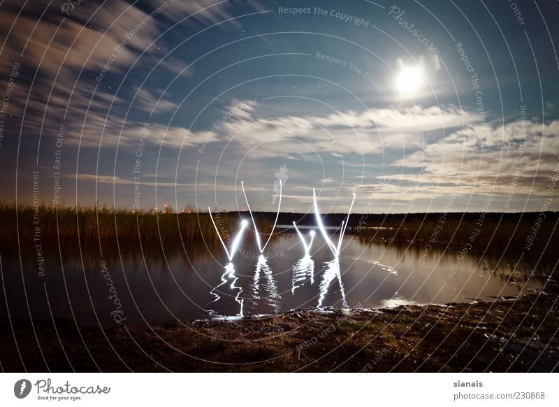 xXxX Environment Nature Landscape Water Sky Night sky Lakeside Pond Sign Characters Digits and numbers Dark Surrealism Typography Letters (alphabet) Flashlight