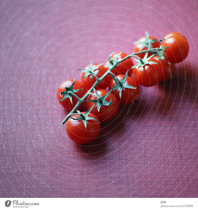 tomatoes Food Vegetable Tomato Nutrition Organic produce Vegetarian diet Healthy Delicious Pink Red Vitamin Colour photo Interior shot Deserted Copy Space left