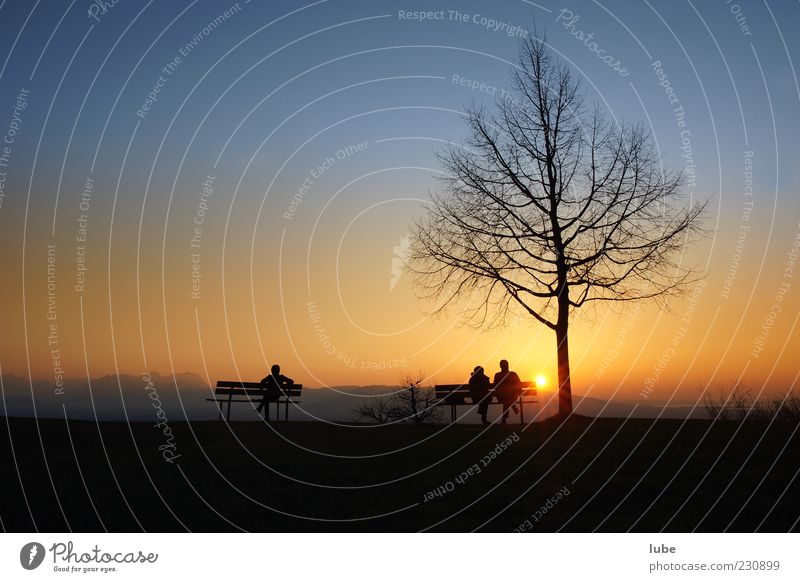 On the bench Harmonious Well-being Contentment Relaxation Calm Vacation & Travel 3 Human being Landscape Cloudless sky Sunrise Sunset Beautiful weather