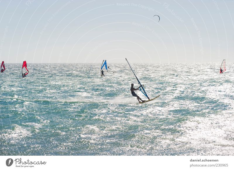 Human being Blue Vacation & Travel White Summer Ocean Adults Far-off places Horizon Waves Wind Glittering Leisure and hobbies Summer vacation Surfing