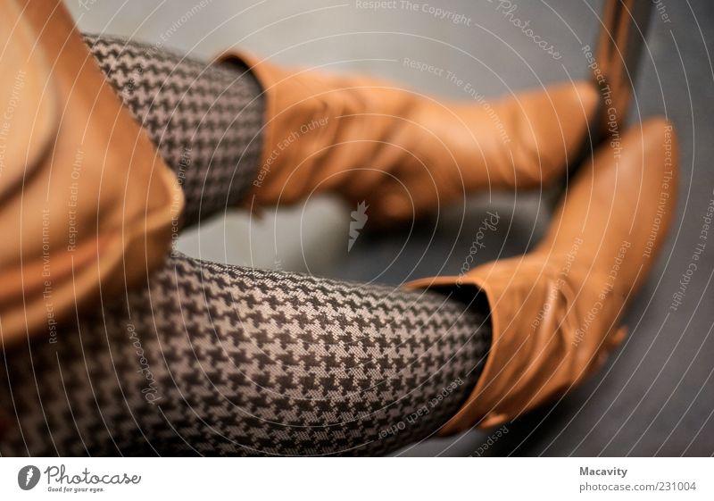 Beautiful Feminine Gray Style Legs Brown Footwear Sit Wait Lifestyle Clothing Retro Simple Boots Freeze Stockings