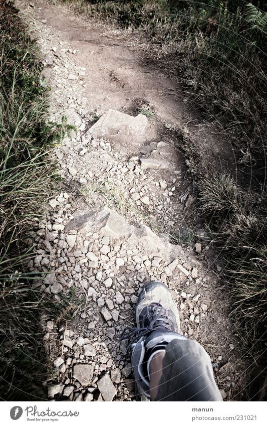 Nature Plant Movement Grass Lanes & trails Legs Feet Footwear Going Rock Walking Hiking Trip Authentic Bushes Target