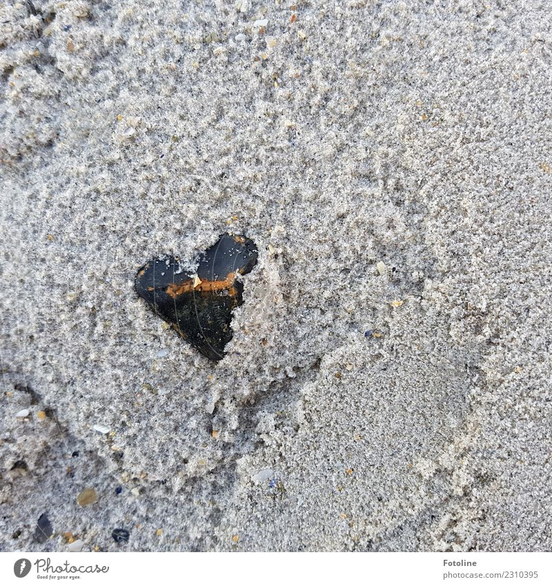 Naturally from the heart Environment Nature Elements Earth Sand Coast Beach Near Wet Brown Gray Black Stone Heart-shaped Stony Colour photo Subdued colour