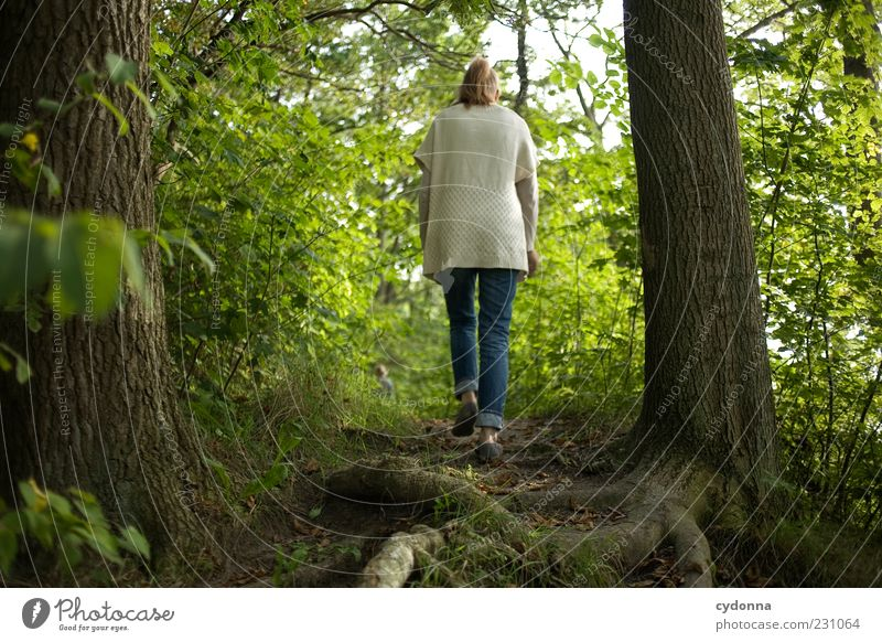 Woman Human being Nature Green Tree Calm Loneliness Forest Relaxation Life Environment Freedom Movement Lanes & trails Time Going