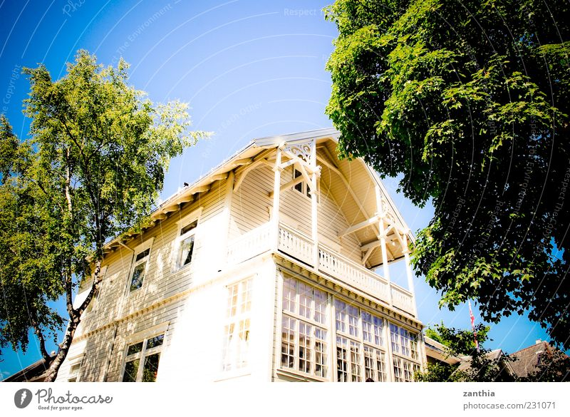 White Tree Vacation & Travel House (Residential Structure) Window Architecture Bright Facade Perspective Balcony Norway Cloudless sky Scandinavia Detached house