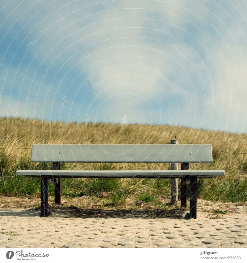 sunbed Environment Nature Sky Clouds Summer Beautiful weather Plant Grass Meadow Hill Relaxation Calm Bench Seating Wooden bench Park bench Dune Marram grass