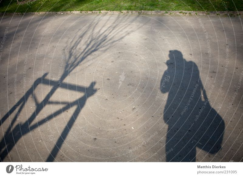 Human being Tree Park Photography Floor covering Uniqueness Lawn Grass surface Sidewalk Photographer Shadow play