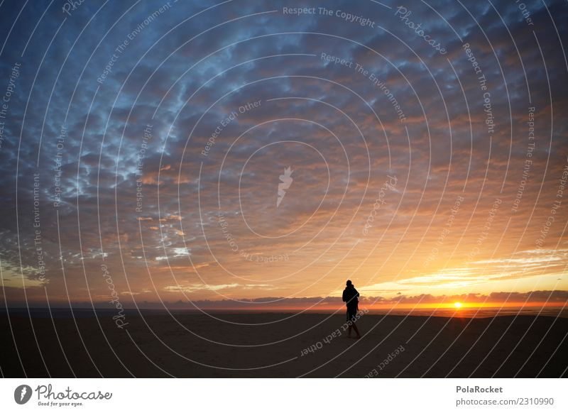 #AS# Operation Desert-Morn # Art Work of art Esthetic Photography Photographer Take a photo Discover Sky Sunrise Early riser Snapshot Gold Walking