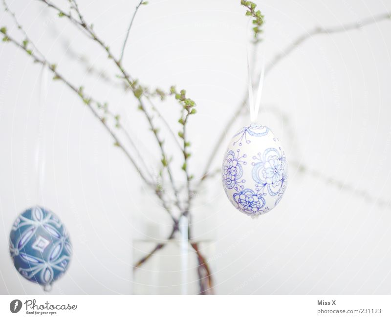 Easter Bushes Hang Easter egg Delicate Light blue Egg Painted Decoration Branch Twigs and branches Vase Bud Spring Spring celebration Colour photo Interior shot