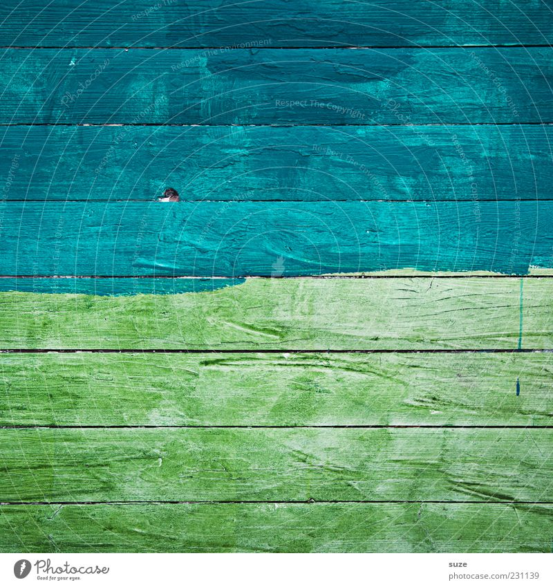 At the lake Wood Line Stripe Dry Blue Green Wall (building) Wooden board Wooden wall Background picture Painted Colour Colour photo Multicoloured Exterior shot