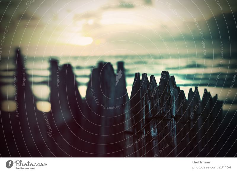 Sky Nature Water Vacation & Travel Summer Ocean Beach Relaxation Environment Wood Coast Waves Point Beautiful weather Fence Baltic Sea