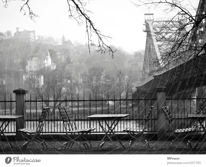 view of the Elbe Bridge Building Stone Wood Steel Rust Water Center point Fence Chair Café Dresden Point River Elbe bank Gray Gloomy Branch Restaurant