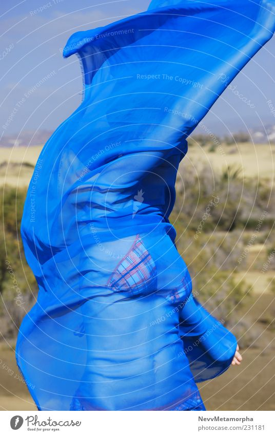Blue Beach Movement Wind Dance Arm Bikini Ease Young woman Rag Vail Human being Cloth Environment Living thing Wrap