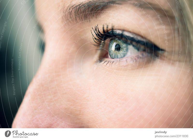 Close-up shot of young woman's eye. Woman Human being Youth (Young adults) Young woman Blue Beautiful Green White 18 - 30 years Eyes Adults Natural Feminine