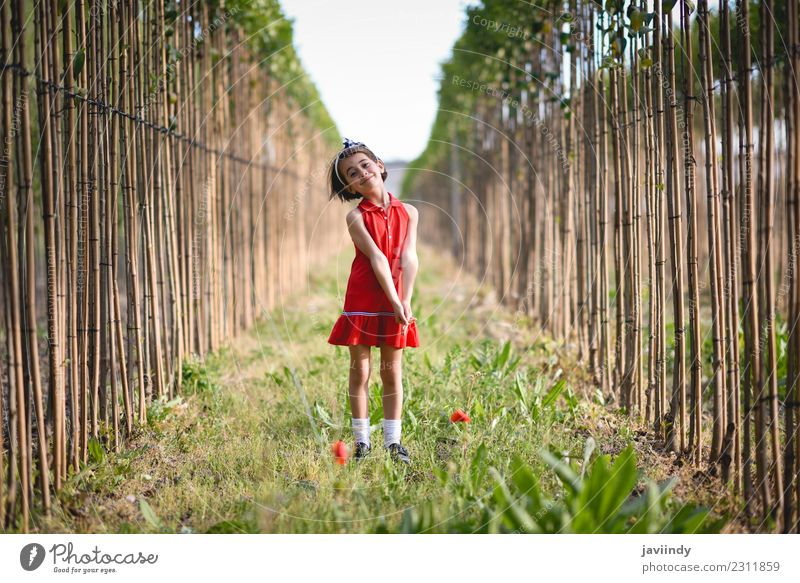 Little girl in nature field wearing beautiful dress Child Woman Human being Nature Summer Flower Joy Girl Adults Lifestyle Meadow Emotions Grass Small Happy