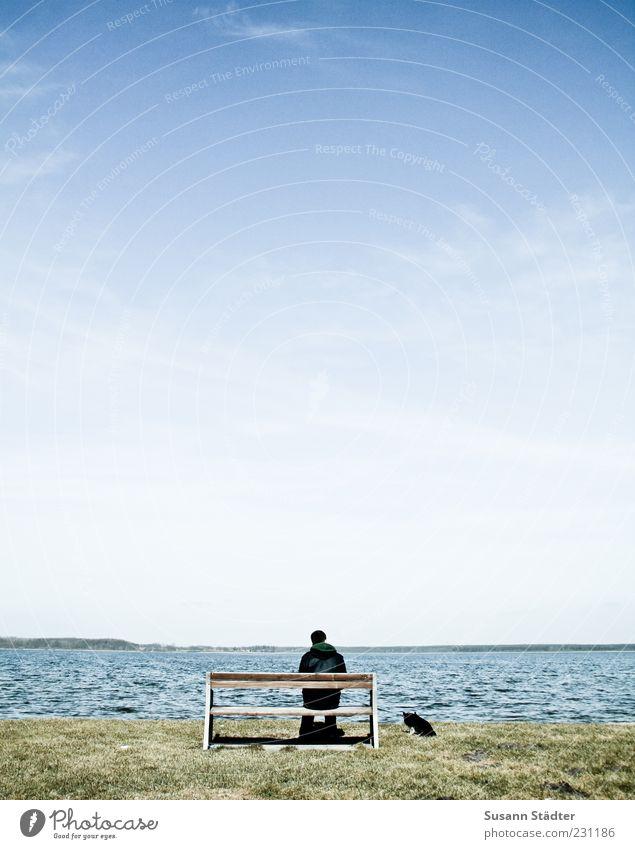 ManDogMeer Masculine Landscape Waves Coast Lakeside Beach Pet Serene Patient Hope Loneliness Moody Bench Sit Break Calm Beautiful weather Longing Colour photo