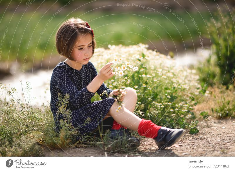 Little girl sitting in nature with flowers in her hand. Child Woman Human being Nature Youth (Young adults) Summer Beautiful Flower Joy Girl Adults Lifestyle