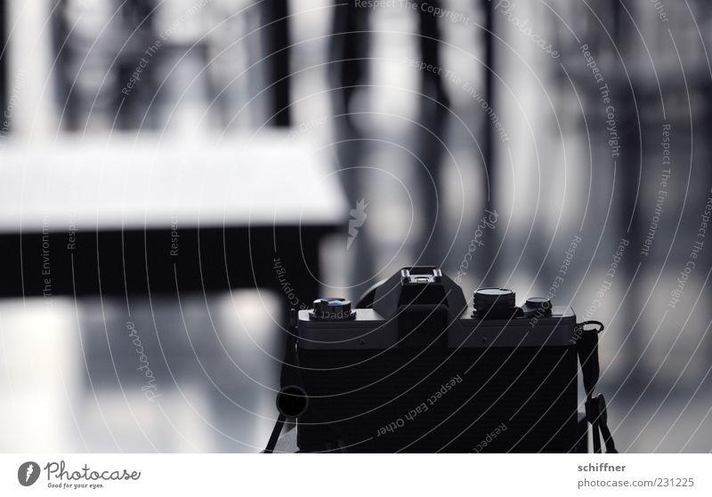 Black Gray Photography Camera Analog Take a photo Photo shoot Single-lens reflex camera