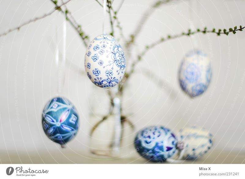 Easter eggs Hang Painted Delicate Fragile Blue-white White Pattern Bushes Twigs and branches Branch Vase Glass Decoration Spring Egg Eggshell Colour photo
