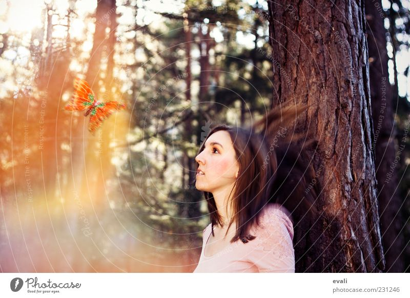 Woman Human being Youth (Young adults) Tree Animal Face Adults Forest Yellow Feminine Head Hair and hairstyles Happy Contentment Pink Happiness