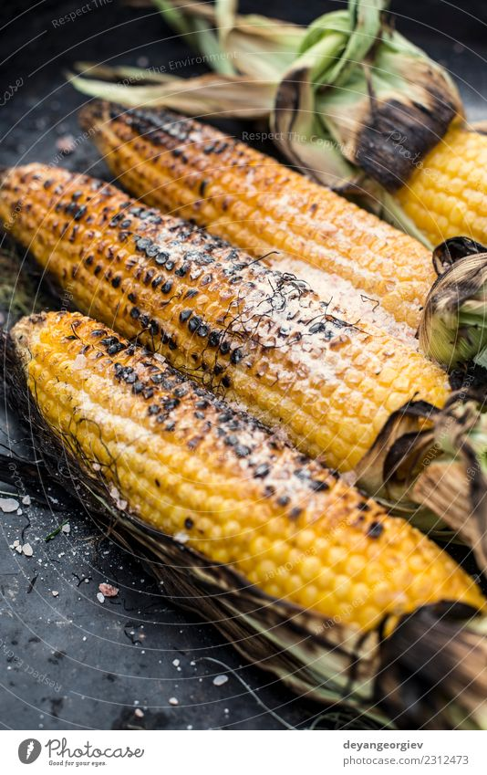 Roasted corn on the grill Vegetable Nutrition Vegetarian diet Summer Fresh Hot Delicious Yellow Gold BBQ roasted food cob barbecue healthy sweetcorn Corn cob