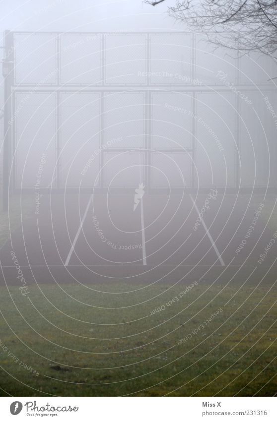 Cold Gray Line Fog Closed Gate Racecourse Sporting grounds Sporting Complex Wall of fog