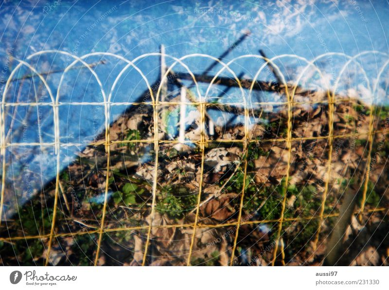 Plant Derelict Fence Analog Double exposure Destruction Wire Dismantling Hazy Roof beams Cramped