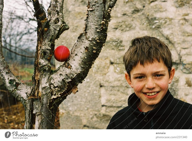 Child Tree Red Life Boy (child) Infancy Happiness Exceptional Easter Smiling Joie de vivre (Vitality) Surprise 8 - 13 years Anticipation Find Human being