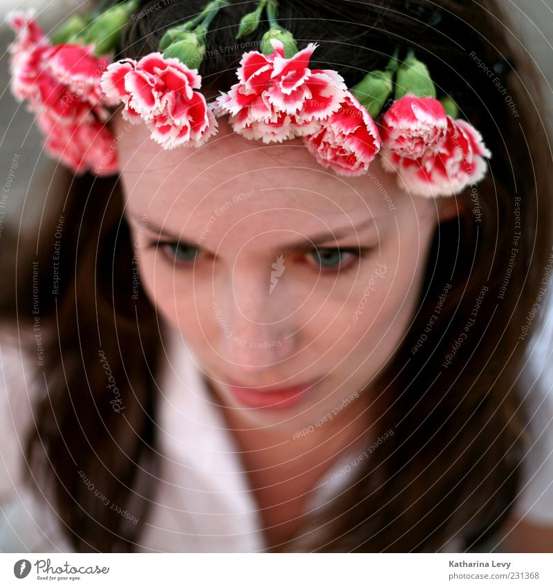 Woman Human being Youth (Young adults) Beautiful Red Flower Face Feminine Head Blossom Hair and hairstyles Adults Skin Pink Natural Wellness