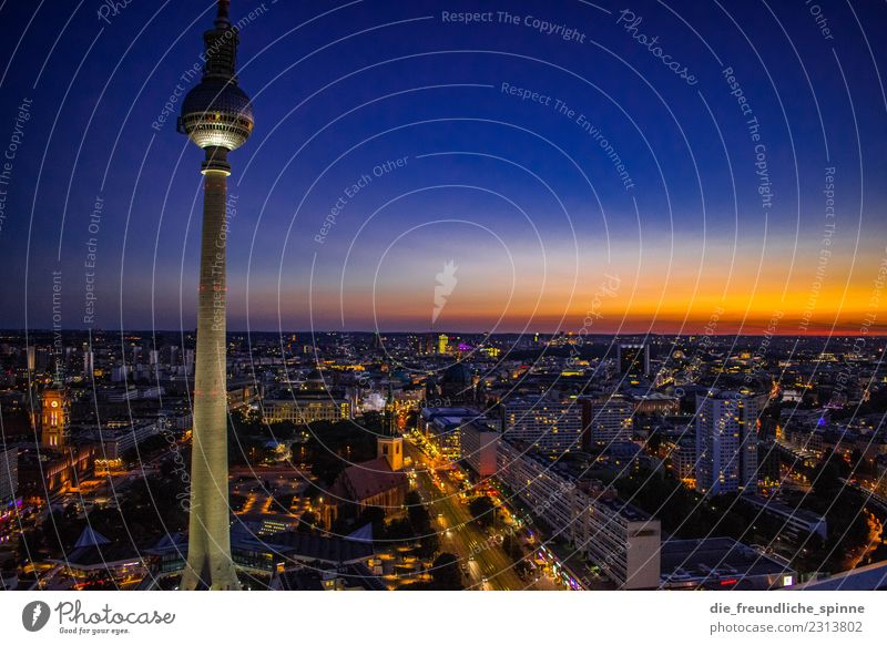 Television tower at dusk Tourism Sightseeing City trip Summer Night life Cloudless sky Horizon Sunrise Sunset Beautiful weather Town Downtown Berlin Germany
