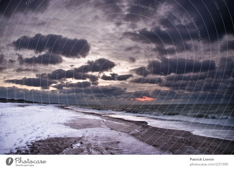 Sky Nature Water Ocean Winter Beach Clouds Cold Dark Environment Landscape Coast Air Weather Waves Wind