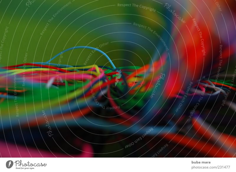 Blue Green White Red Yellow Pink Wild Network Telecommunications Information Media Steel cable Economy Information Technology Knot
