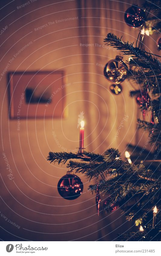 Decorated Christmas tree with burning candle and Christmas tree balls in the living room shoulder stand Glitter Ball Ambient Pensive Living room Candlelight