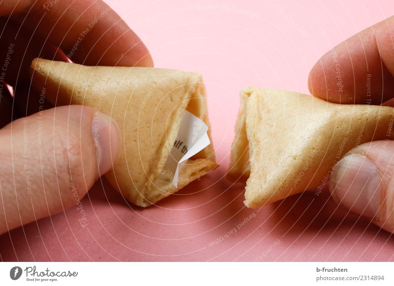 Chinese style fortune cookie with paper mottos Candy Man Adults Fingers Discover To hold on Looking Pink Happy Curiosity Fortune cookie Undo Cookie