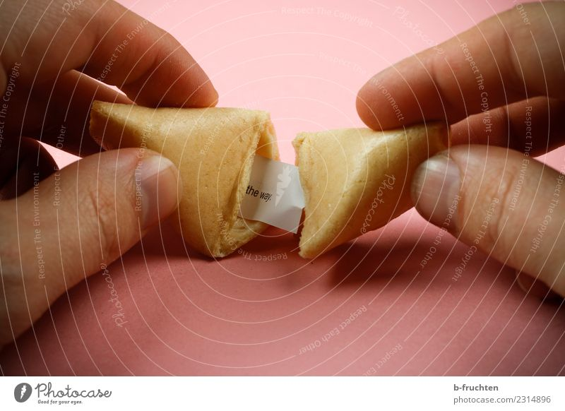 fortune cookie Candy Man Adults Fingers To hold on Pink Curiosity Happy Fortune cookie Undo Piece of paper Wisdom Figure of speech Colour photo Interior shot