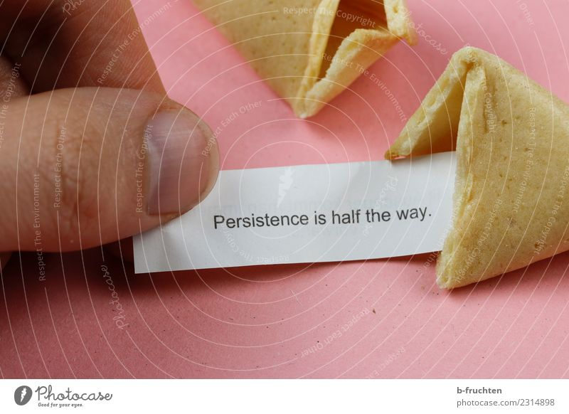 Persistence is half the way Candy Man Adults Fingers To hold on Reading Pink Happy Curiosity Expectation Belief Religion and faith Endurance Wisdom