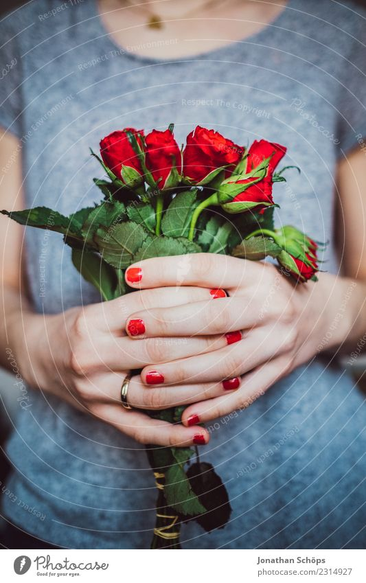 red roses for Valentine's Day Joy Human being Feminine Young woman Youth (Young adults) Woman Adults Friendship Couple Partner Hand 1 18 - 30 years Flower Rose
