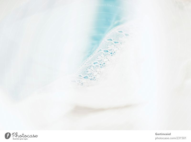 White Decoration Soft Cloth Delicate Turquoise Well-being Easy Lace Smooth Textiles Vail Structures and shapes