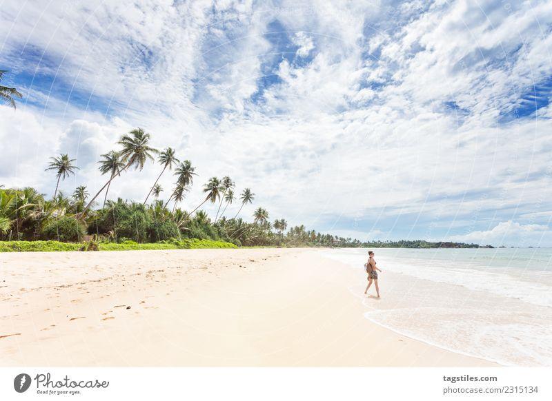 Balapitiya, Sri Lanka - Woman at the beach of Balapitiya Asia Beach Beautiful Cute Dreamily Heavenly Idyll Illuminate Landscape Nature Ocean Palm tree Peaceful