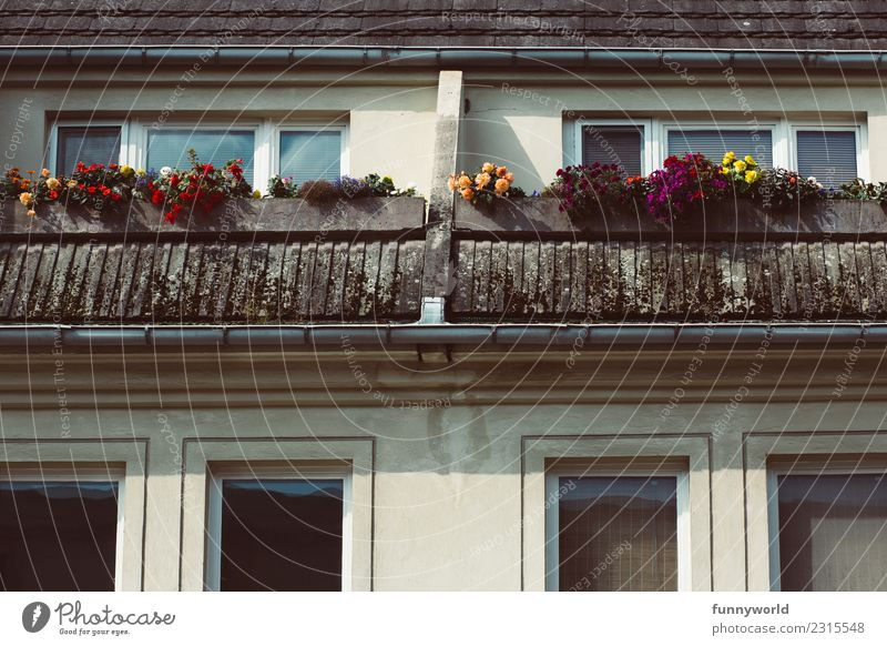 Balcony with flowers in the attic Small Town House (Residential Structure) Roof Eaves Living or residing Above Cliche Loneliness SME Symmetry Flower
