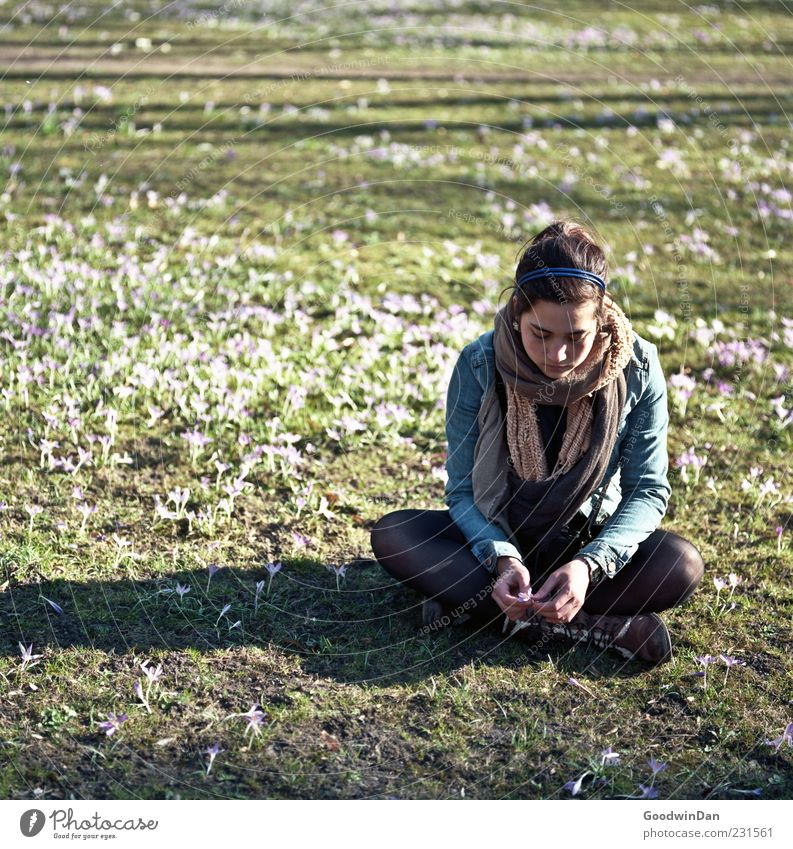 Woman Human being Nature Youth (Young adults) Beautiful Plant Adults Feminine Environment Sadness Dream Moody Park Weather Sit Wait