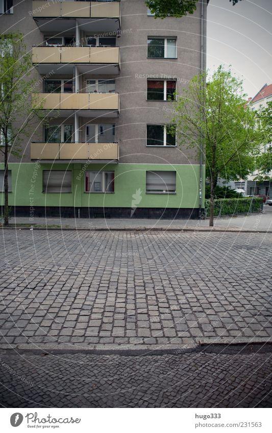 City Green Tree Street Berlin Gray Stone Facade Gloomy Sidewalk Traffic infrastructure Balcony Cobblestones Shabby Capital city Paving stone